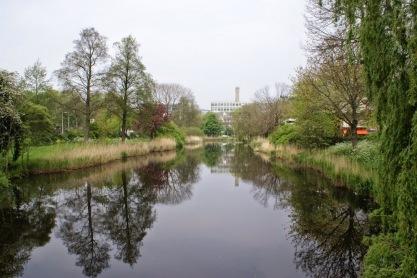 Groen Buitenveldert. Foto: Hans van der Schaaf.
