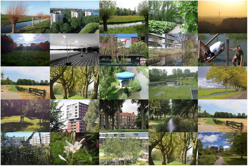 Een greep uit de inzendingen van de fotowedstrijd Groen in West, 2015.